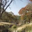 Robertson Creek