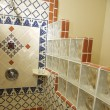 Hand Painted Talavera Tile Shower